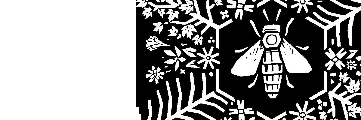 Miels & Forêts